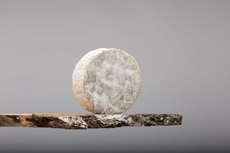 Camembert de Normandie, un combat pour la défense du goût et du terroir