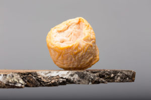 Le Langres, au creux des saveurs champenoises